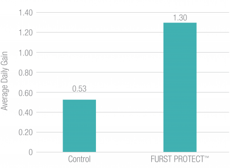 Furst Protect Improved Average Daily Gain