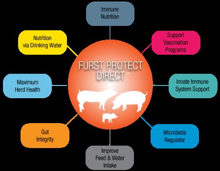 Furst Protect Direct Circle Diagram-larger